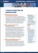 5 raisons de choisir Blue Coat Optimisation WAN