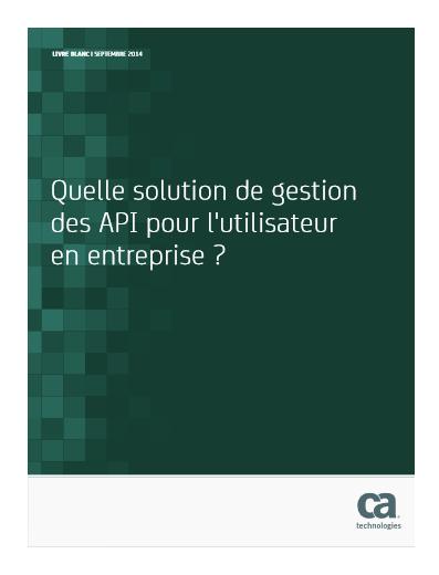 Quelle solution de gestion des API pour l'utilisateur en entreprise ?