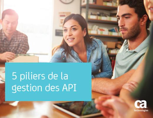 5 piliers de la gestion des API