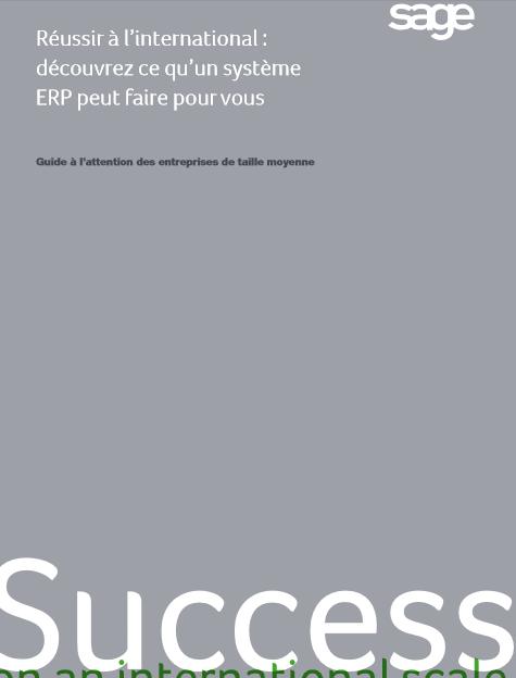 Réussir à l'international : découvrez ce qu'un système ERP peut faire pour vous
