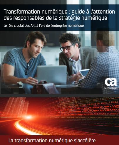 Transformation numérique : guide à l'attention des responsables de la stratégie numérique