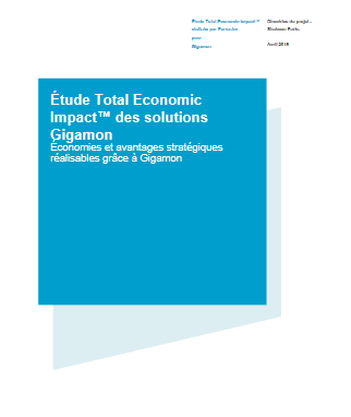 Étude Total Economic Impact des solutions Gigamon