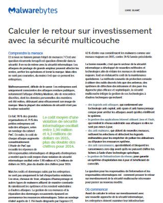 Calculer le retour sur investissement  avec la sécurité multicouche