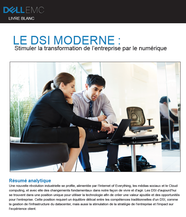 LE DSI MODERNE: Stimuler la transformation de l'entreprise par le numérique