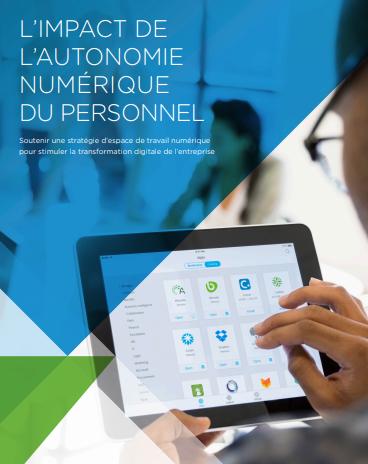 L'impact de l'autonomie numérique du personnel