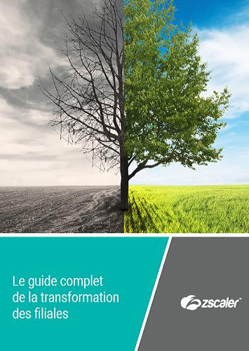 Le guide complet de la transformation des filiales