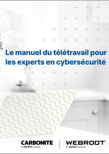 Le manuel du télétravail pour les experts en cybersécurité