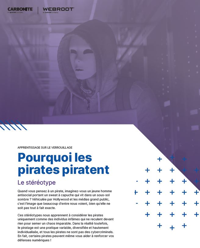 Pourquoi les pirates piratent?